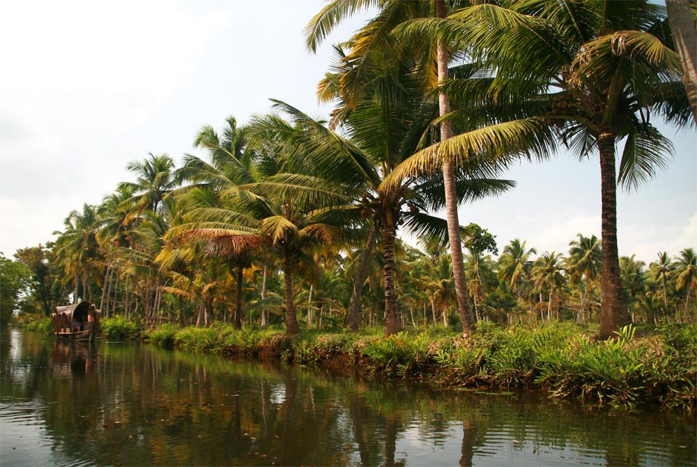Un-Canal-en-Kerala