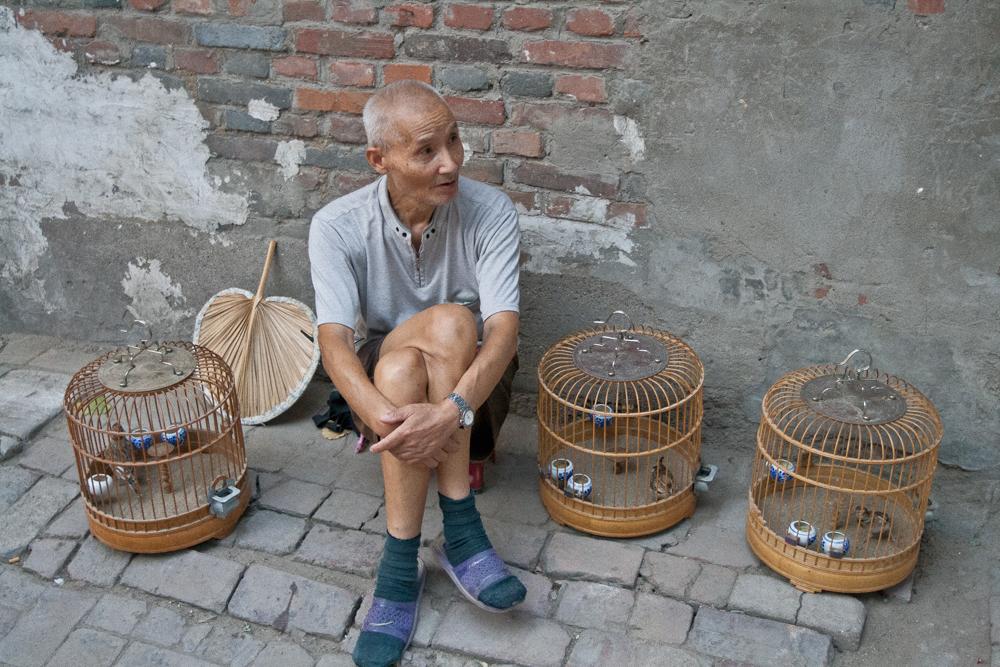 Vendedor-de-pájaros