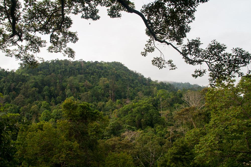 Vistas-del-parque-nacional-II