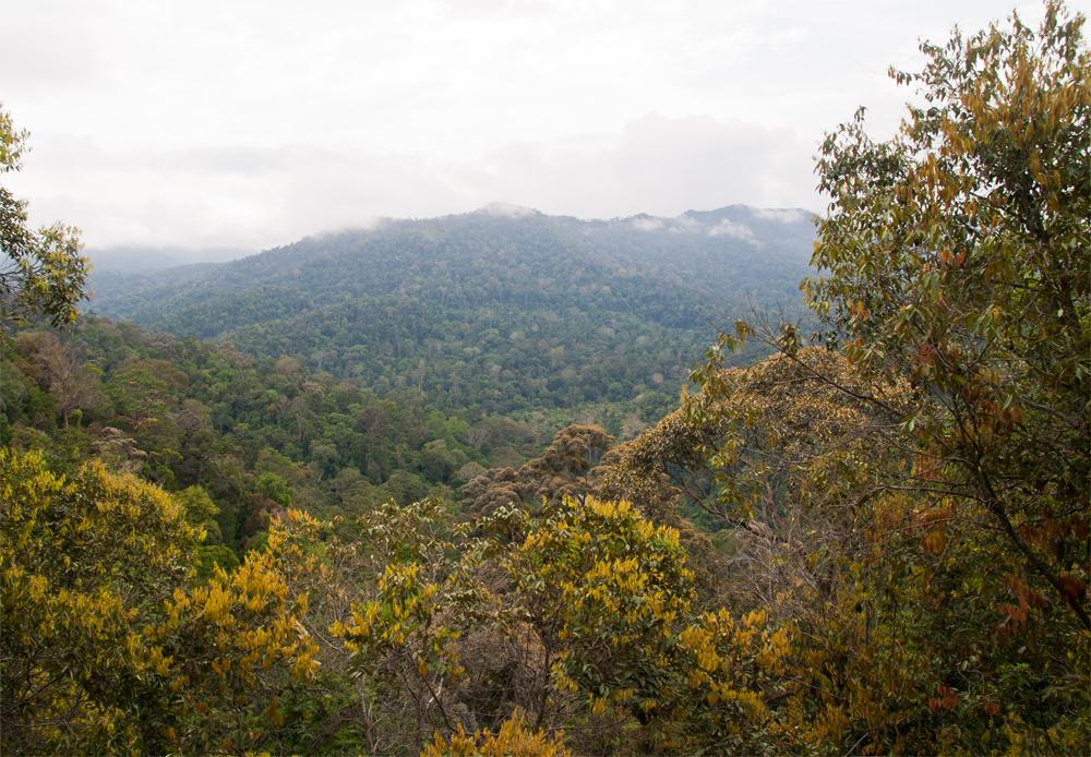 Vistas-del-parque-nacional