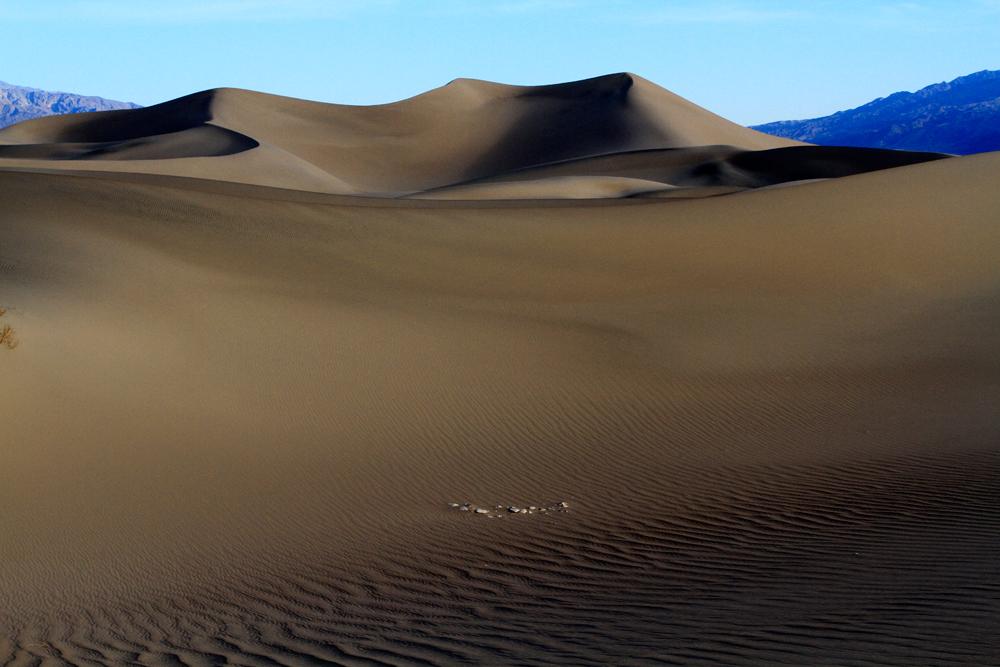 Dunas-mesquite-flat-IV