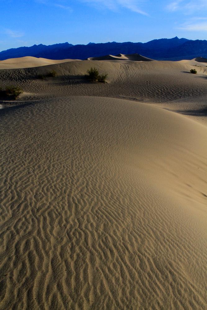 Dunas-mesquite-flat-VI