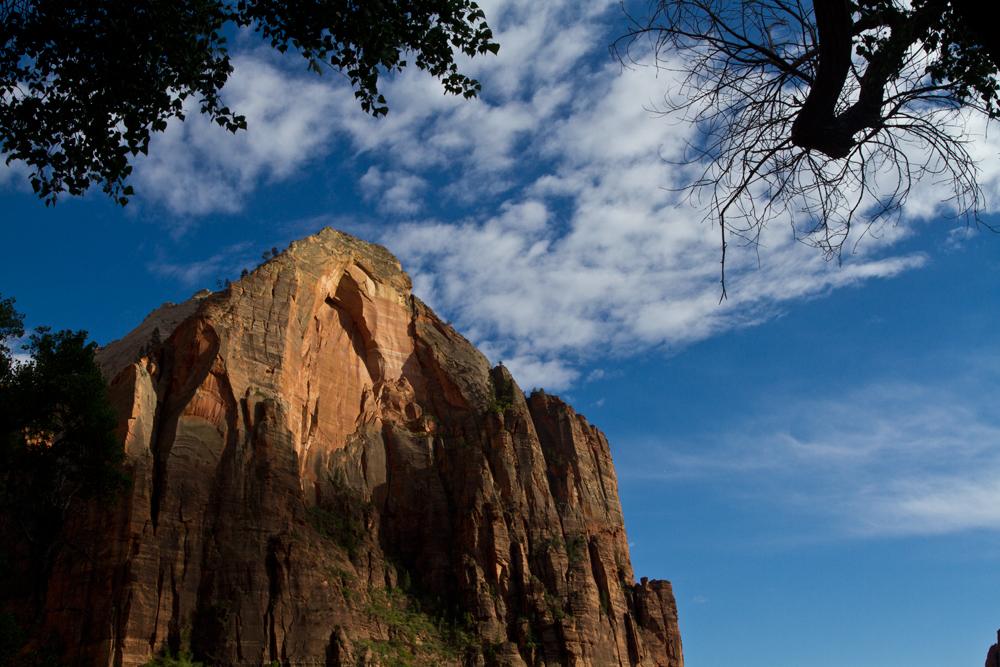 Parque-nacional-de-Zion-III