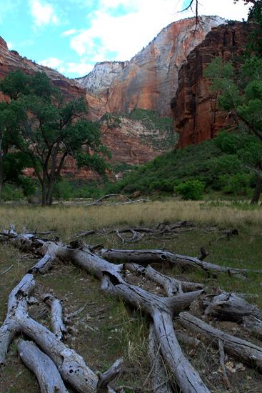 Parque-nacional-de-Zion-X