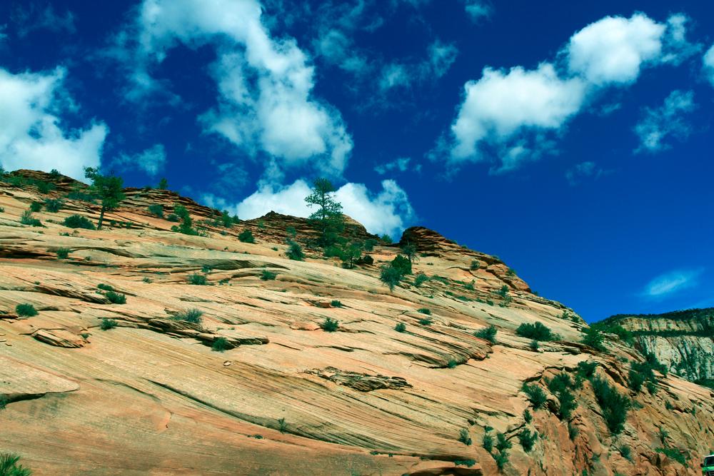 Parque-nacional-de-Zion-XVI