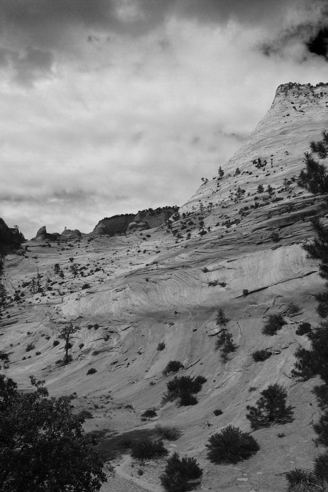 Parque-nacional-de-Zion-XVII
