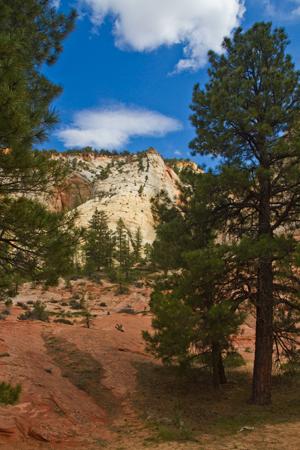 Parque nacional de Zion XXII