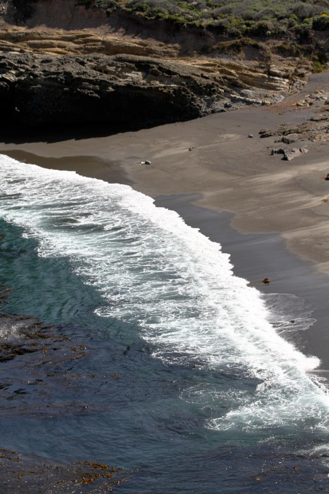 Playa-en-Punta-Lobos