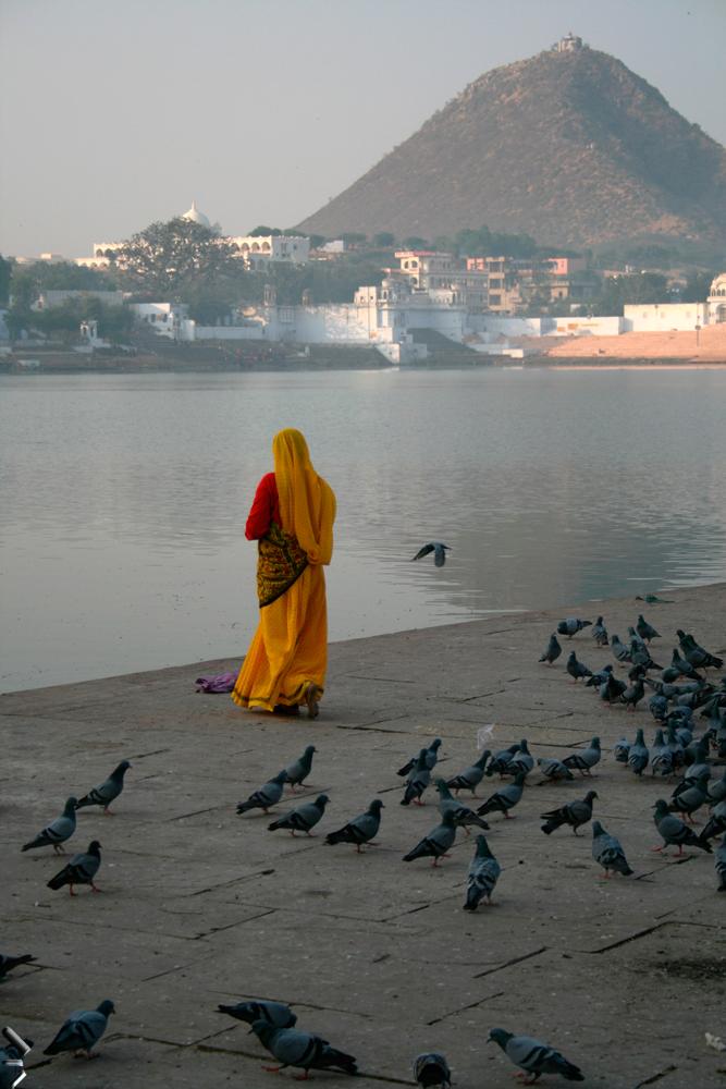 Amanece-en-Pushkar