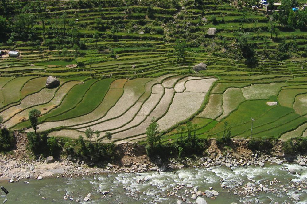 Campos-de-cultivo-de-Kohistan-en-Pakistán