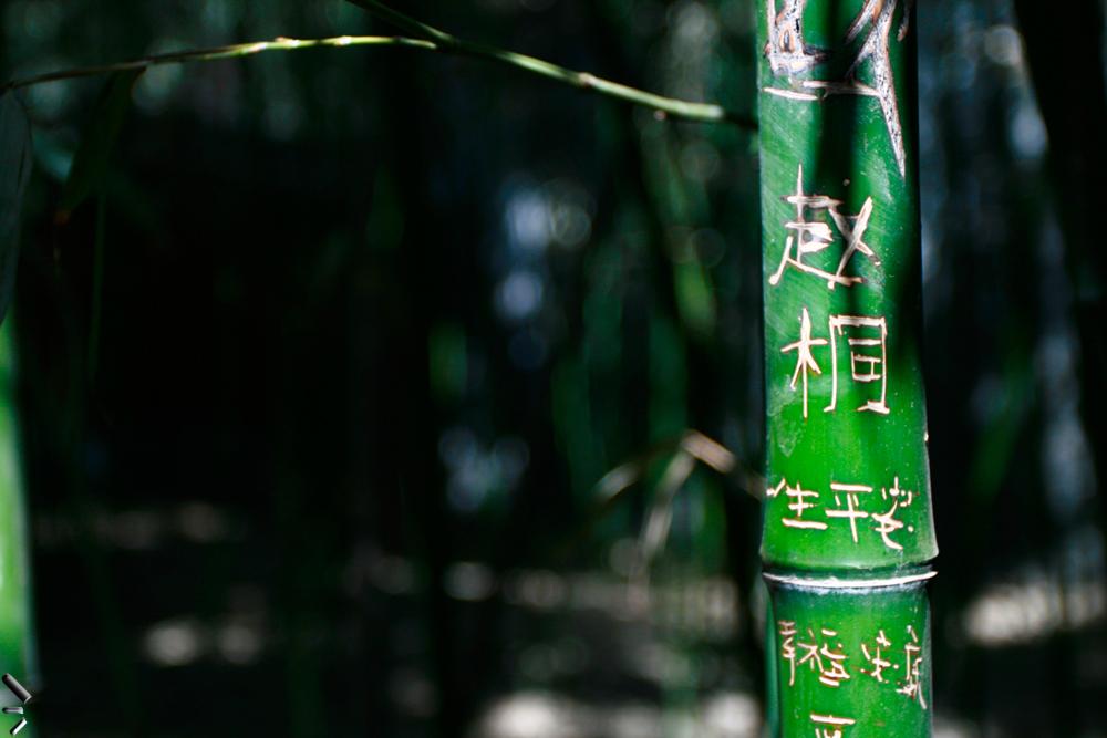 Caracteres-chinos-sobre-bambú