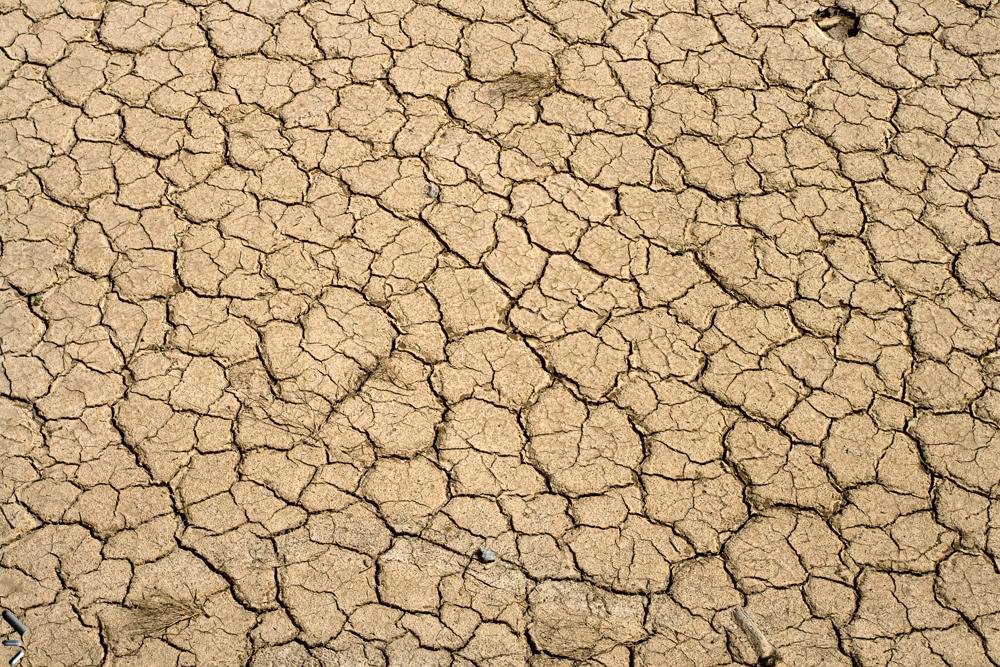 La-aridez-del-desierto