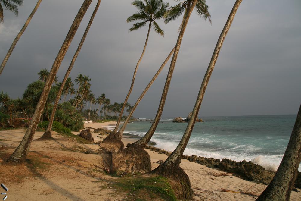 Playa-de-Mirissa-en-Sri-Lanka