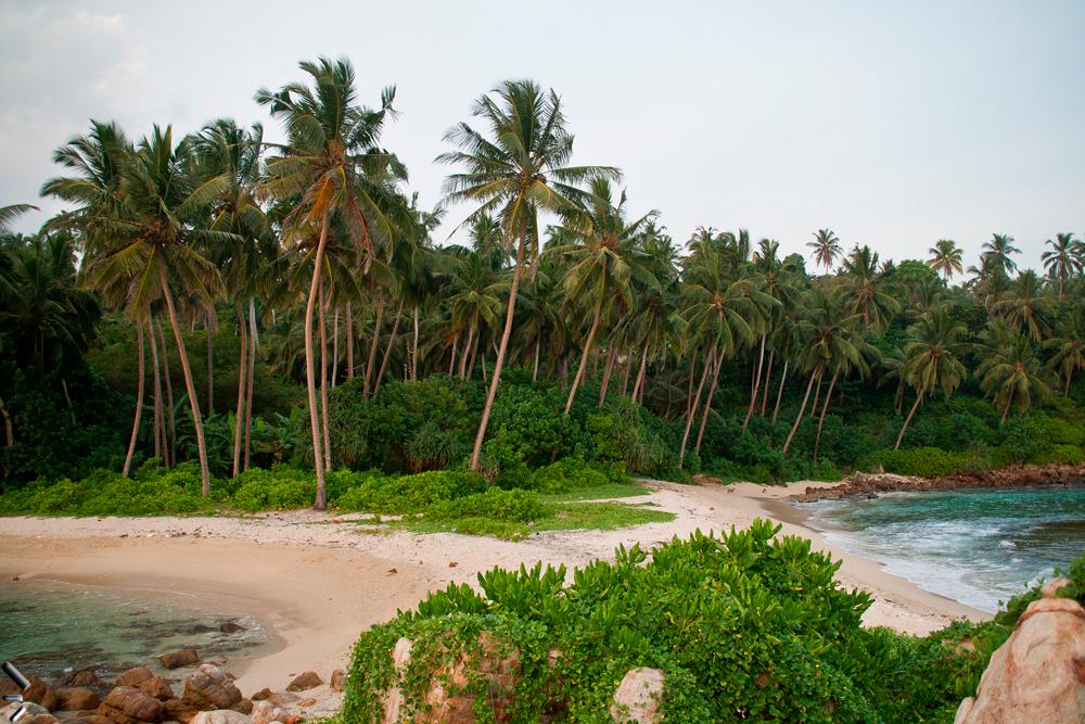 Playa-del-sur-de-Sri-Lanka