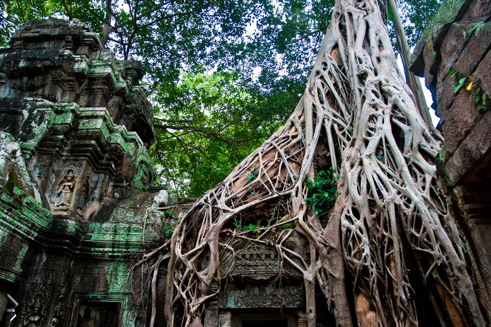 Templos-de-Angkor-Camboya