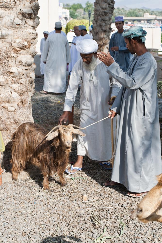Nizwa (Eid-al-Adha)