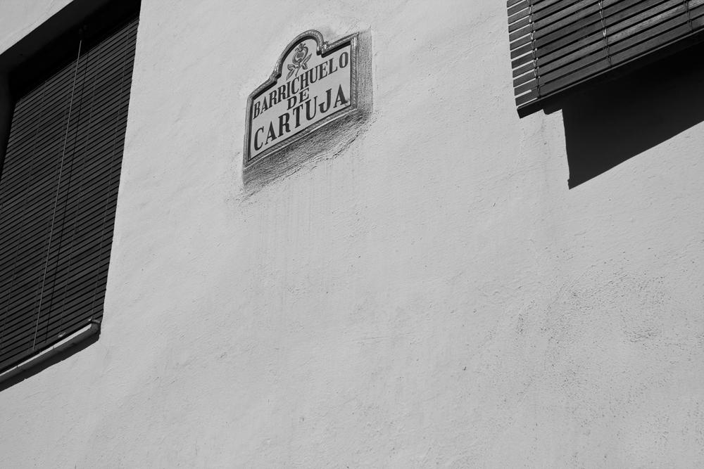 Barrichuelo-de-cartuja
